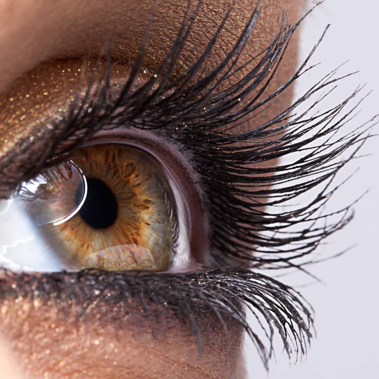 Professional Lash and Brow Tinting